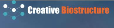 creative biostructure logo